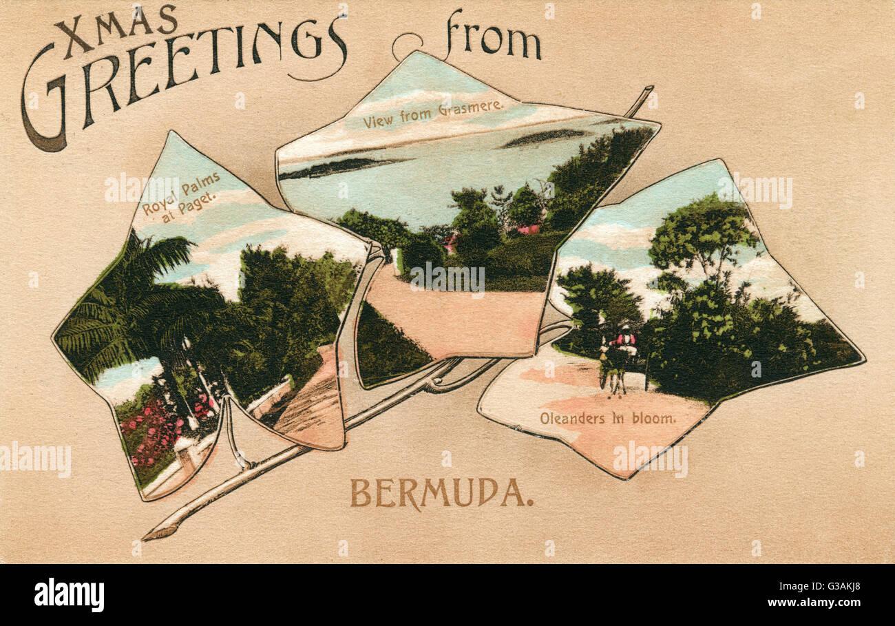 Bermuda - mit drei Einfügung blattförmige Bilder darstellen: Royals Palmen an Paget, der Blick von Grasmere Stockbild