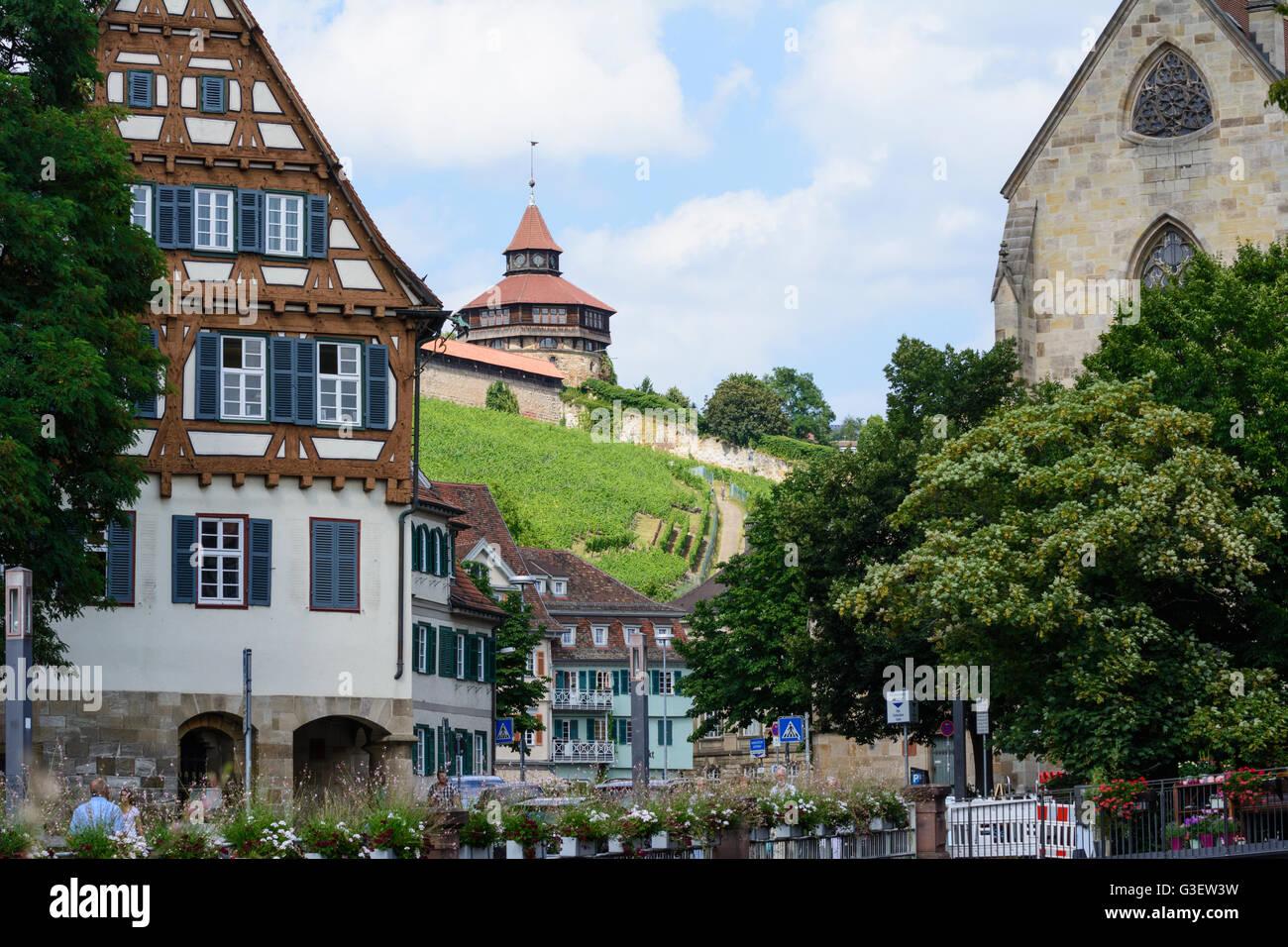 Marktplatz Weinberg Schloss Deutschland Baden Württemberg