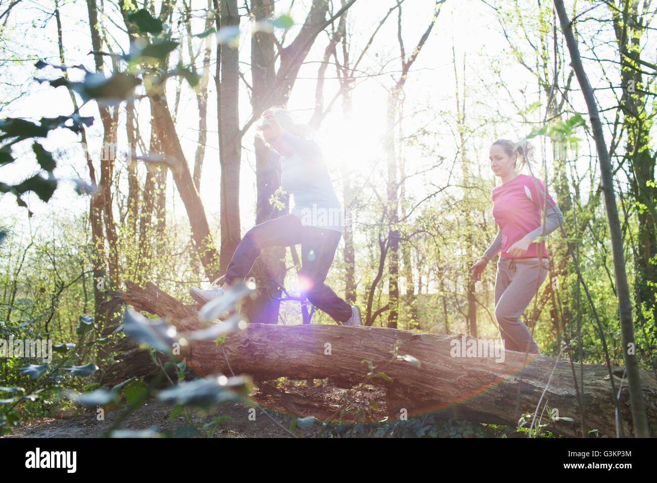 Frauen im Wald über umgestürzten Baum springen Stockbild