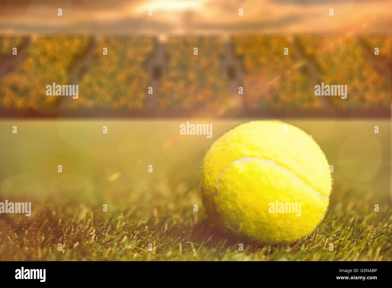 nahaufnahme von tennisball auf dem rasen stockfoto bild 105575338 alamy. Black Bedroom Furniture Sets. Home Design Ideas