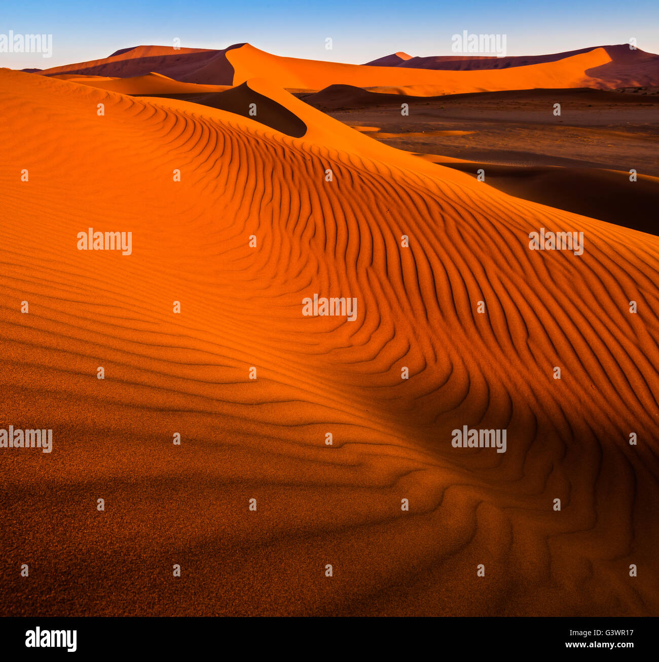Sossusvlei ist ein Salz und Ton Pan, umgeben von hohen roten Dünen, befindet sich in der in der Namib-Naukluft Stockbild