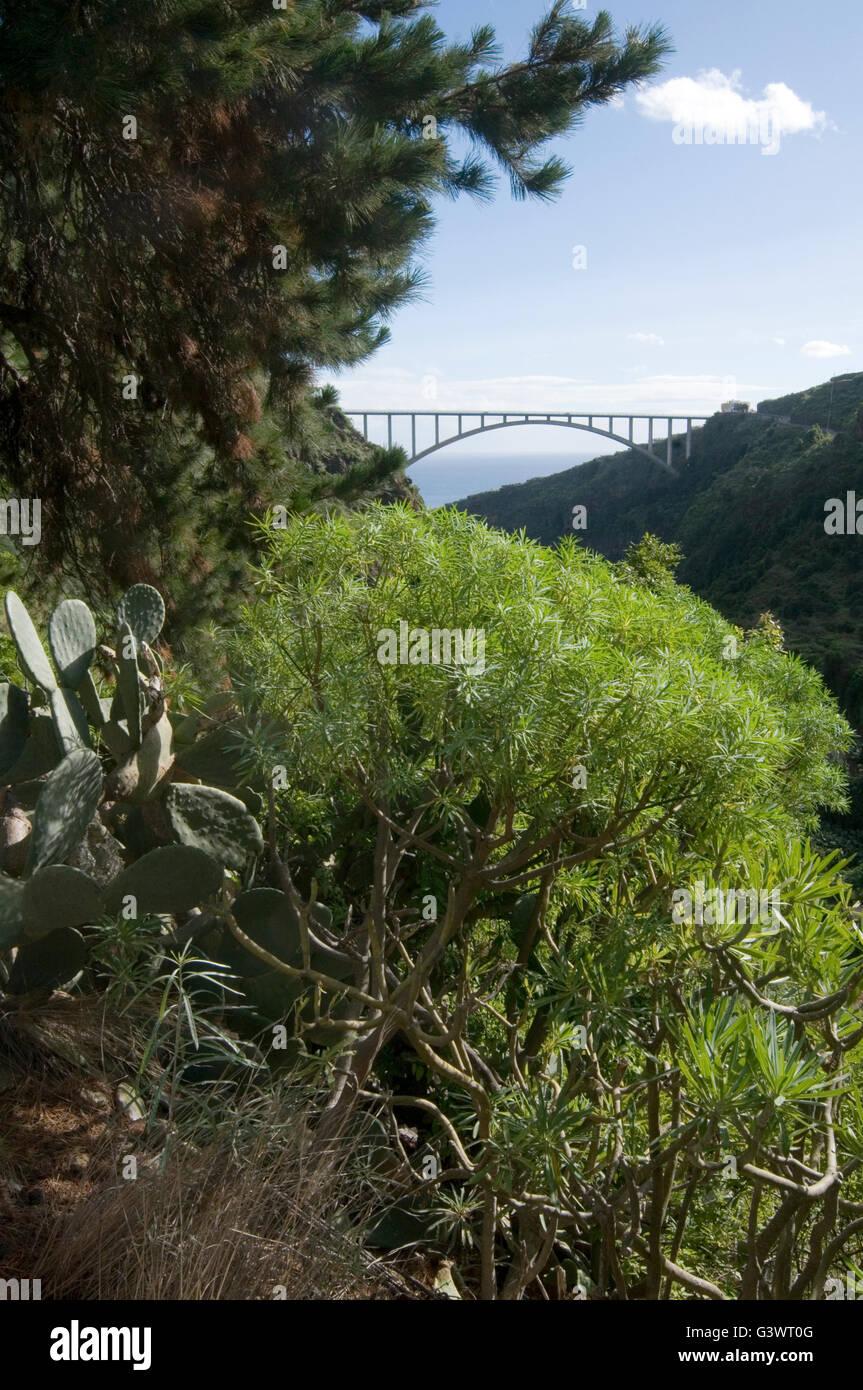 Viadukt von Tilos La Palma große konkrete Bogen Straßenbrücke gewölbten Bögen Spanne von Stockbild