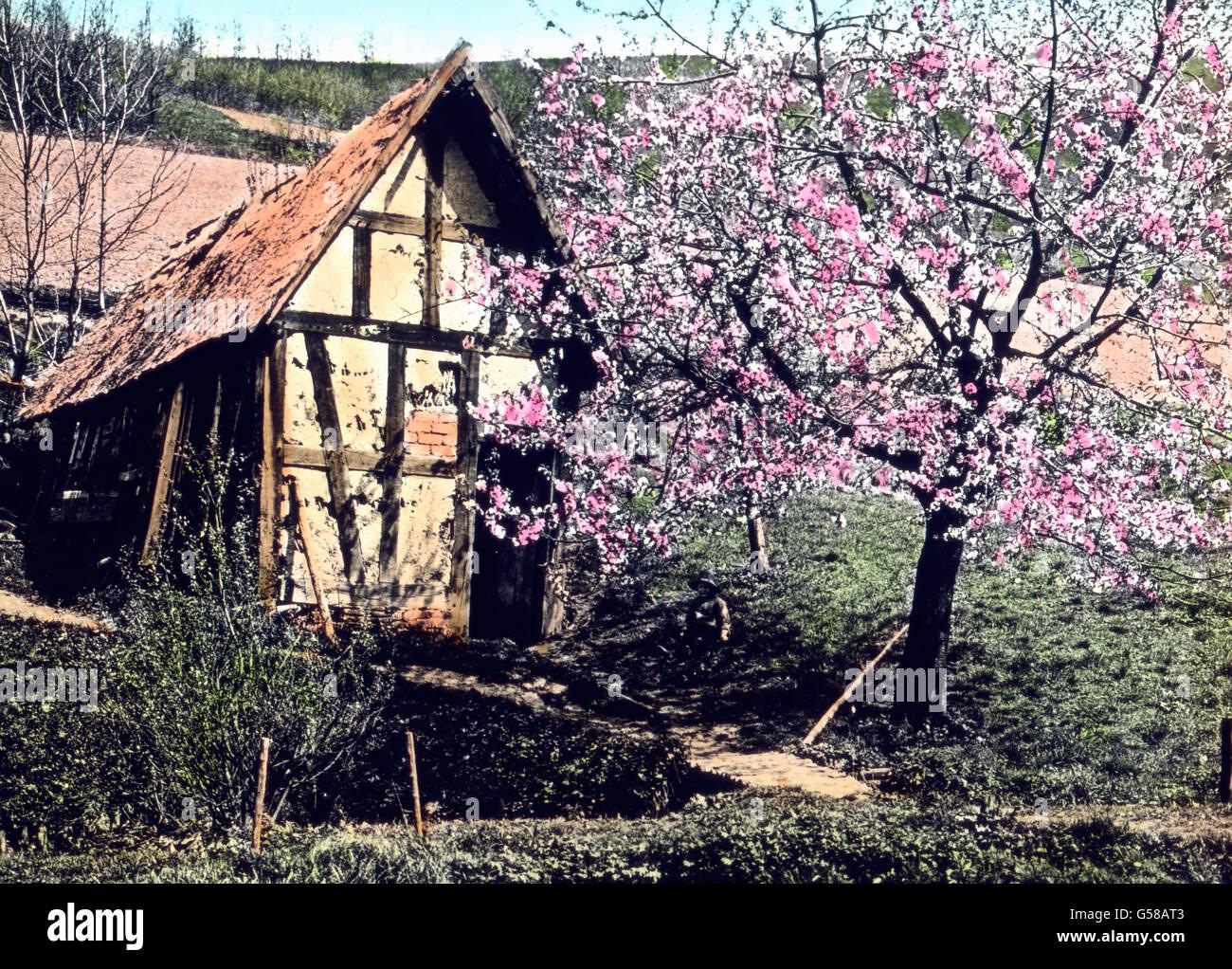 Bildchen Stockfotos & Bildchen Bilder - Alamy