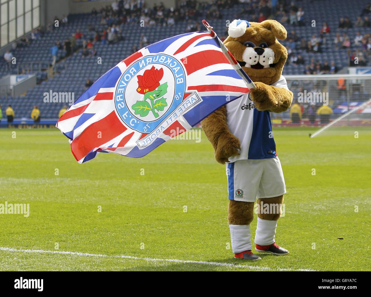 Blackburn Rovers Fu/ßball Schal