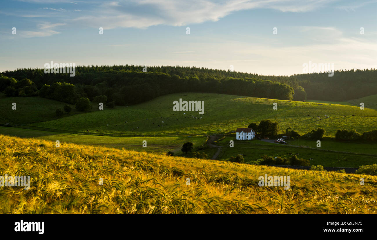 Bauernhaus auf der Kent Downs, einem Teil des North Downs und einem Gebiet von außergewöhnlicher natürlicher Stockbild