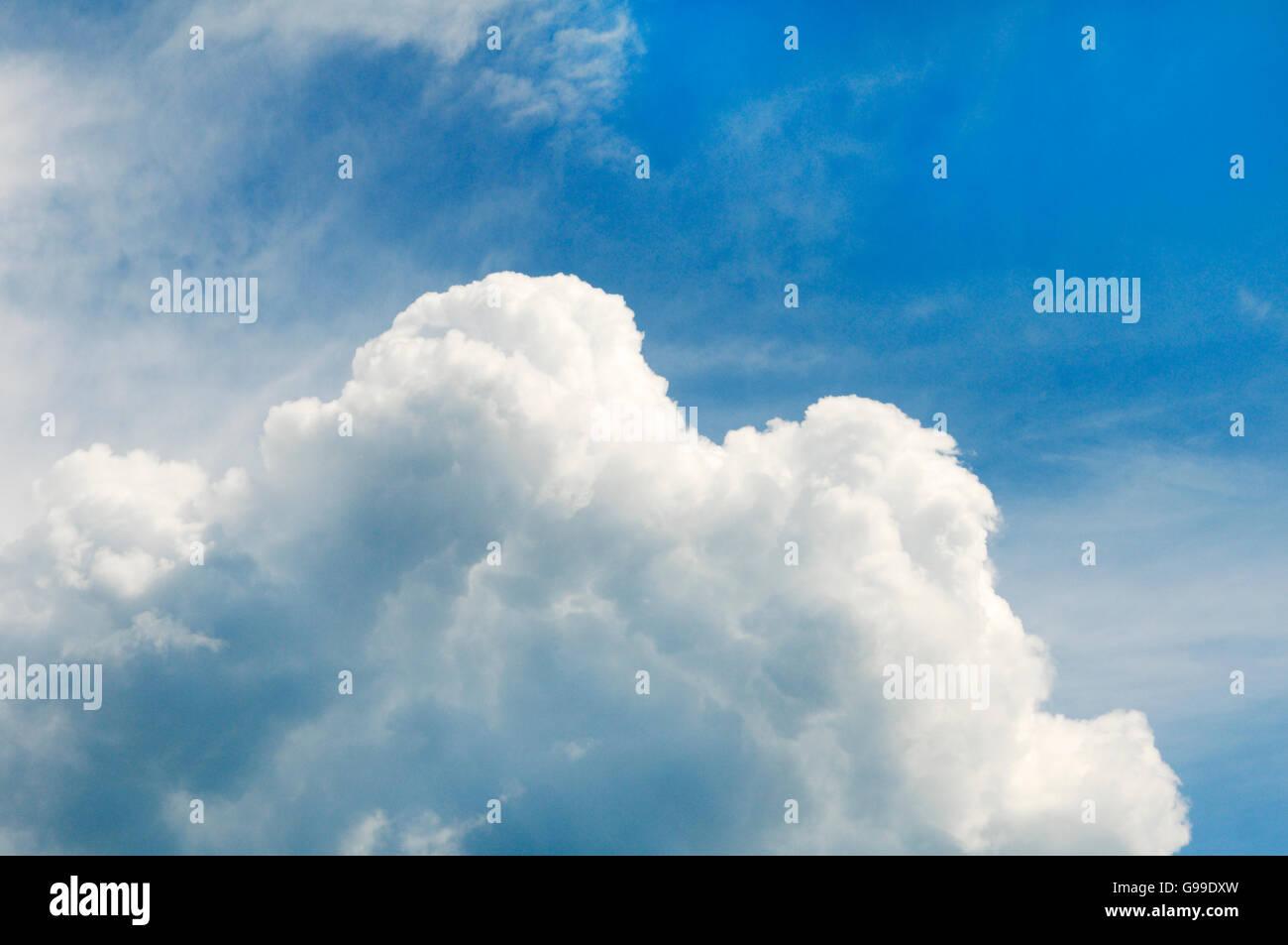 Geschwollene Cumulus-Wolken gemischt mit blauem Himmel Stockbild