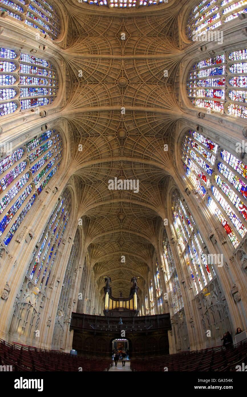 Innere des Kings College Chapel, mit Schiff, gebeizt Glas und Orgel, Universität Cambridge, Cambridgeshire, Stockbild