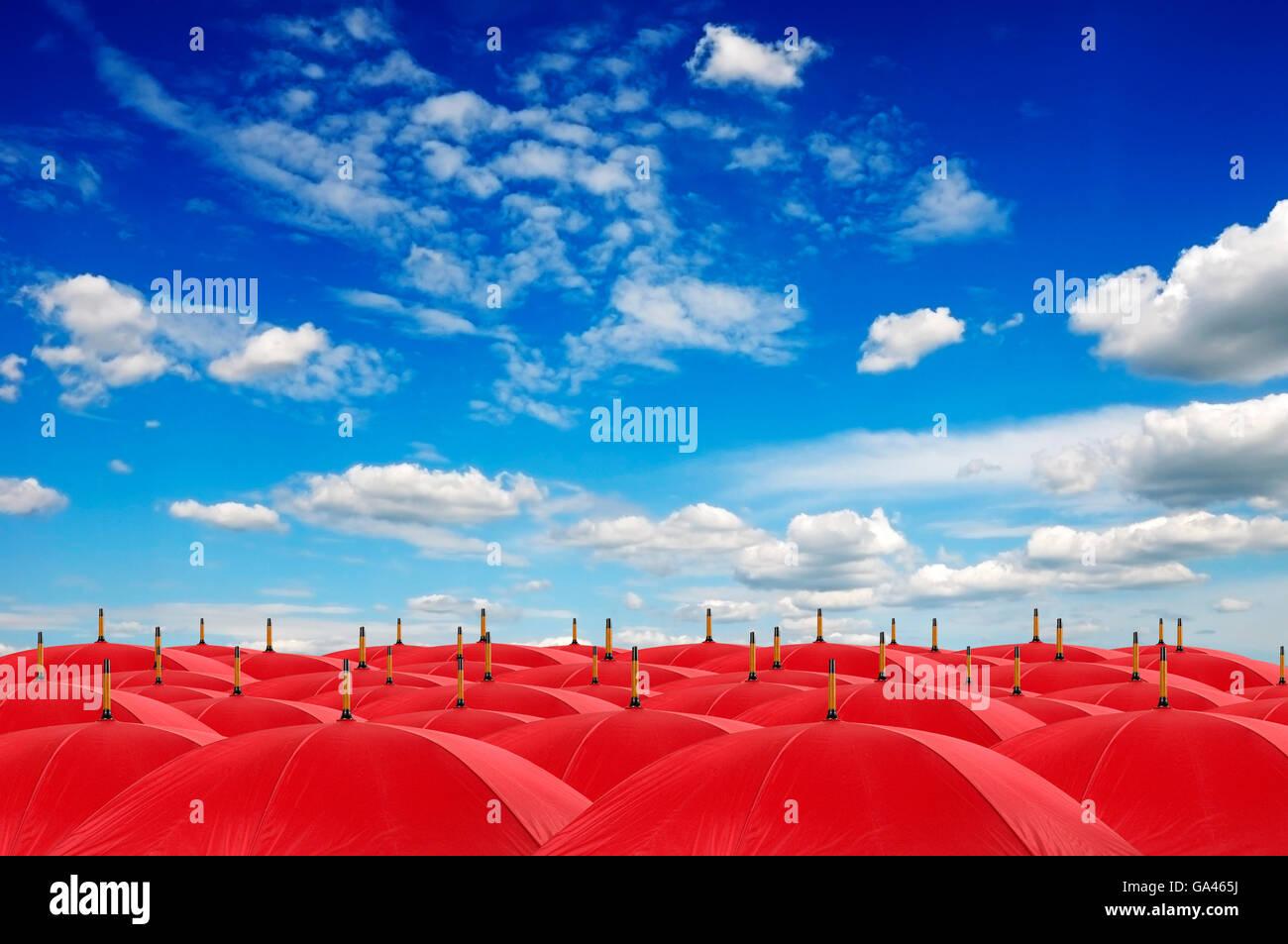 Reihen von geöffneten roten Sonnenschirmen Stockfoto