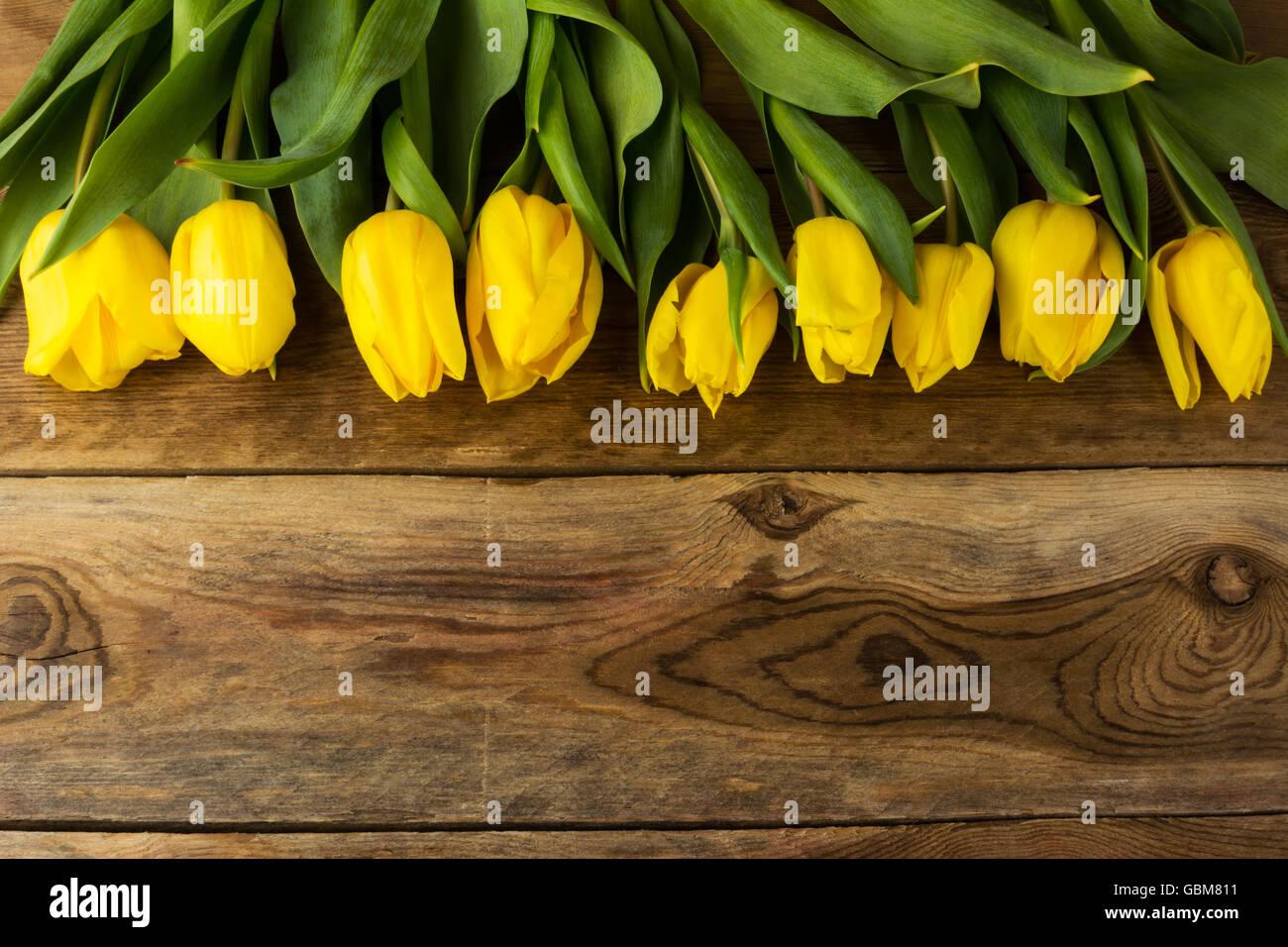 gelbe tulpen gru karte fr hling blumen blumen postkarte blumengr e geburtstagskarte. Black Bedroom Furniture Sets. Home Design Ideas
