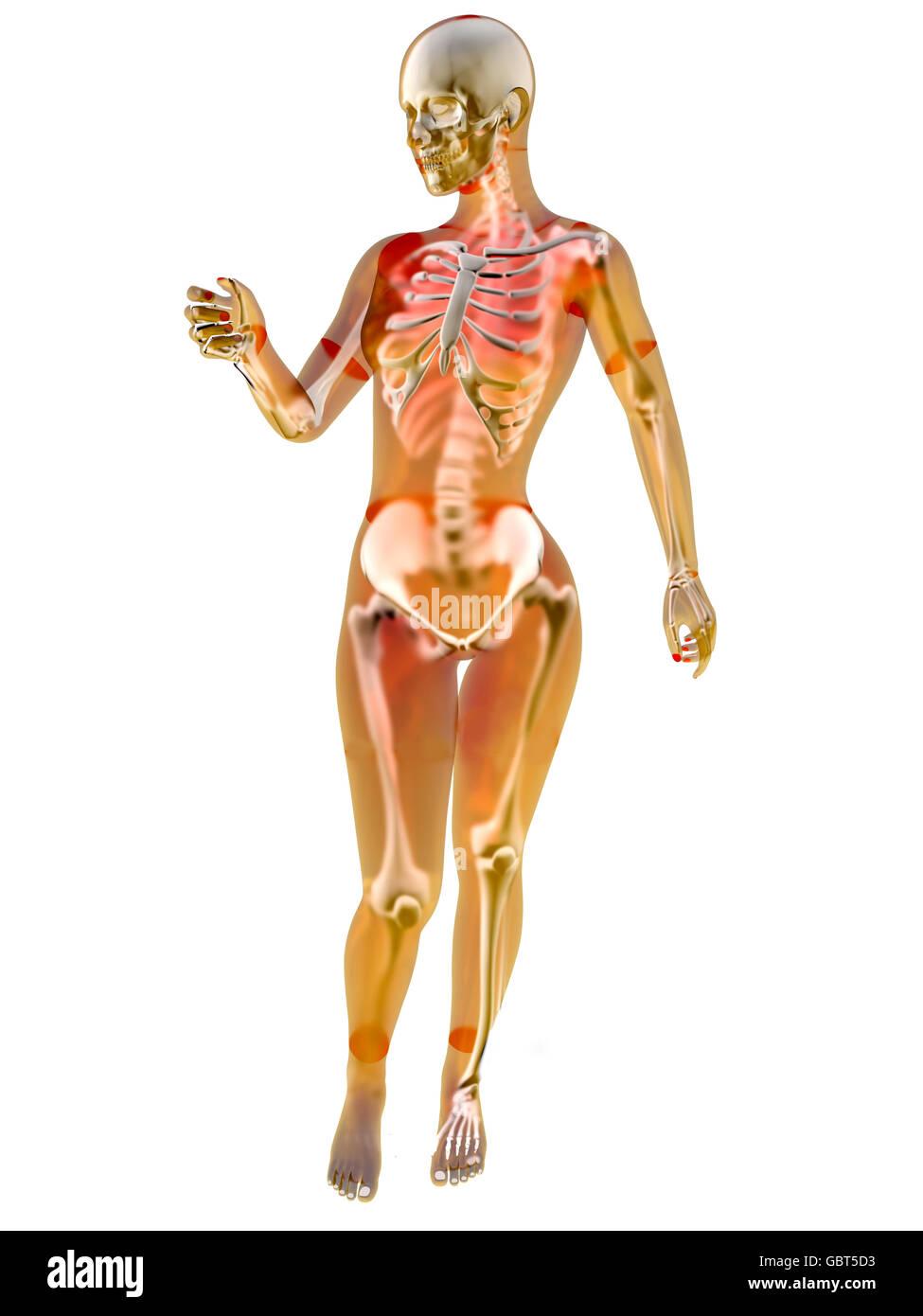 Fein Weibliche Anatomie Skizze Fotos - Menschliche Anatomie Bilder ...