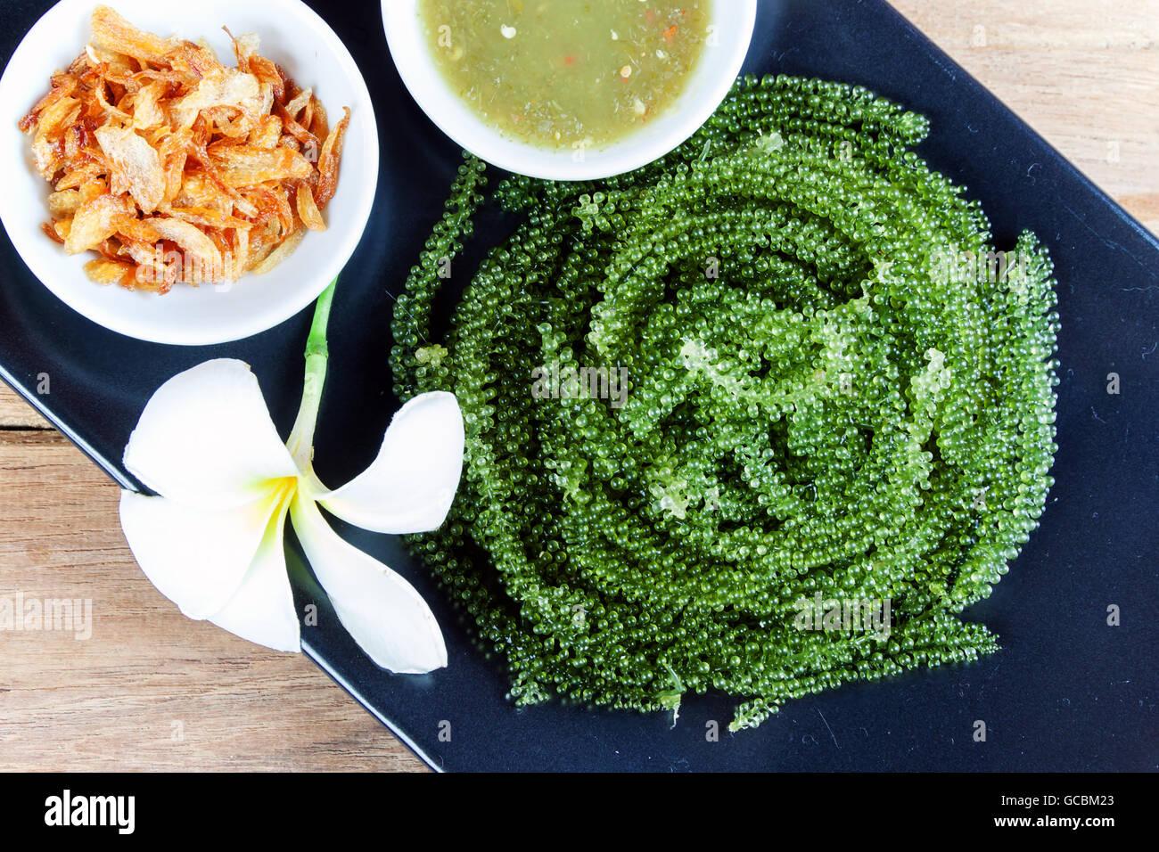Caulerpa stockfotos caulerpa bilder seite 3 alamy for Indischer holztisch