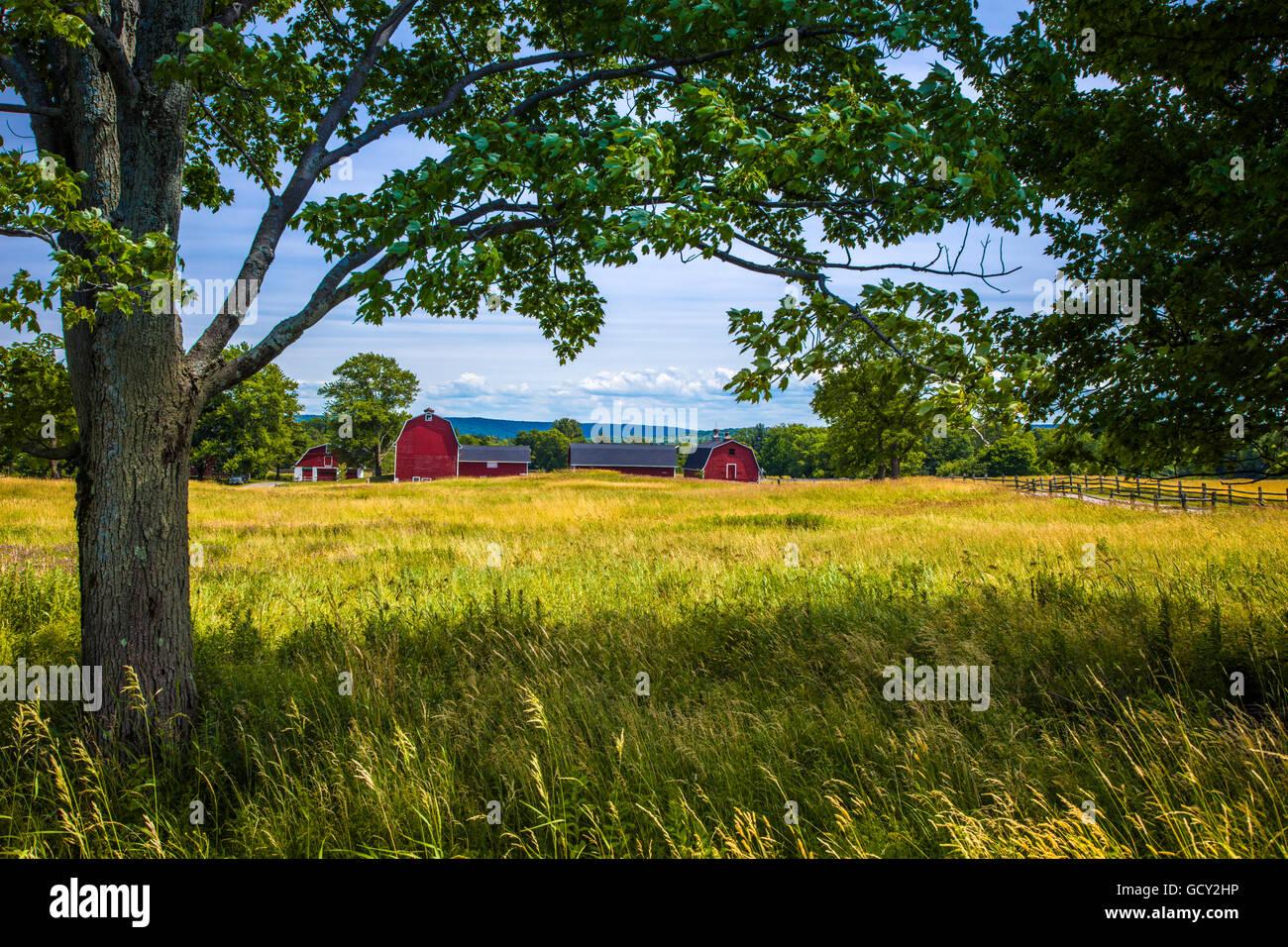 Roten Scheunen in Knox Farm State Park in Stadt von East Aurora im Staat Western New York Stockbild