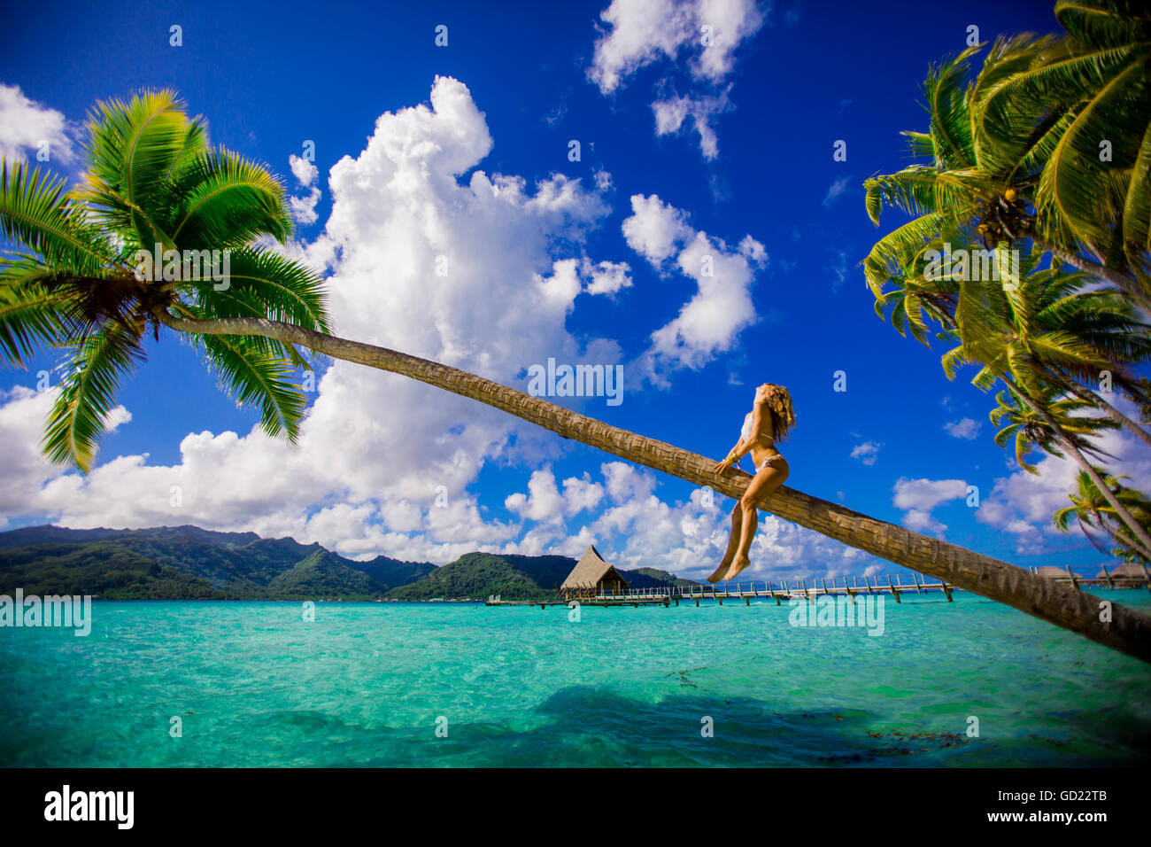 tahiti young girl french polynesia stockfotos tahiti young girl french polynesia bilder alamy. Black Bedroom Furniture Sets. Home Design Ideas
