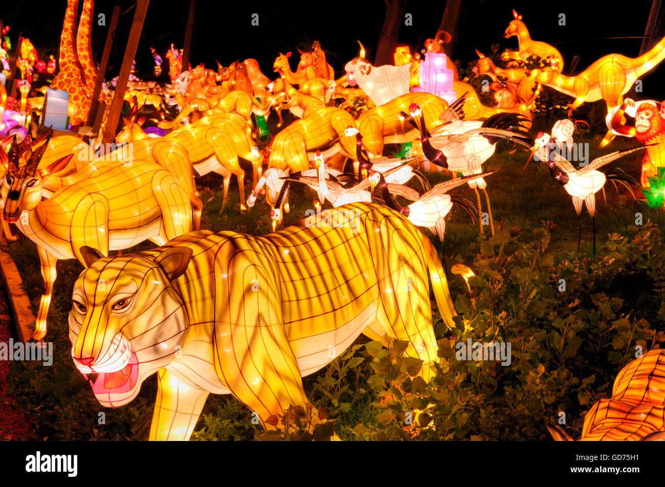 Gruppe von verschiedenen Tieren, Beleuchtung an das chinesische Laternenfest in der Nacht, Ontario Place, Toronto, Stockbild