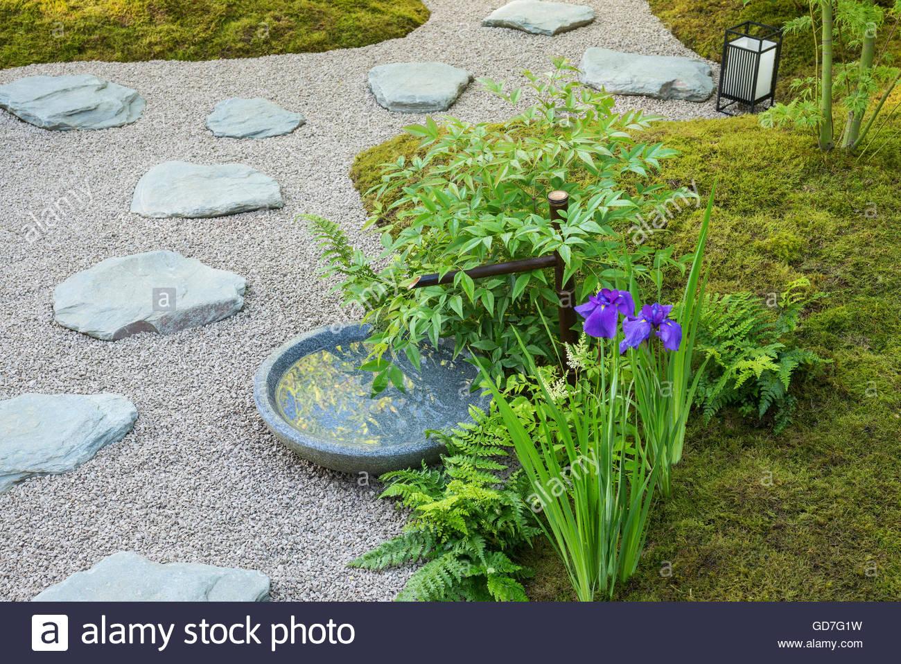 garten mit moos steinen kies wasser baum und iris im japanischen stil der japanische sommer. Black Bedroom Furniture Sets. Home Design Ideas