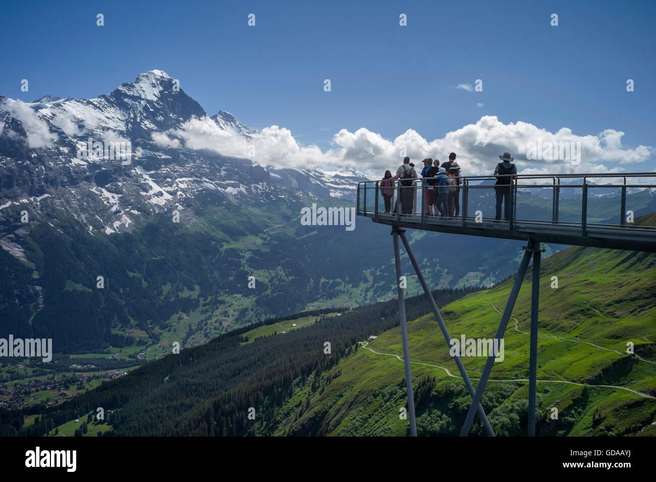 Schweiz. Berner Oberland. Juli 2016Walking von FIRST über Grindelwald in den Schweizer Alpen im Berner Oberland Stockbild