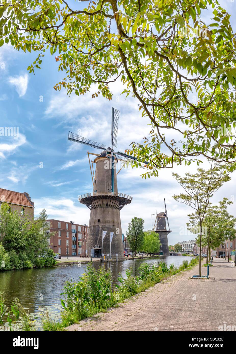 Schiedam, Turm Mühlen am Noordvest-Kanal Stockbild