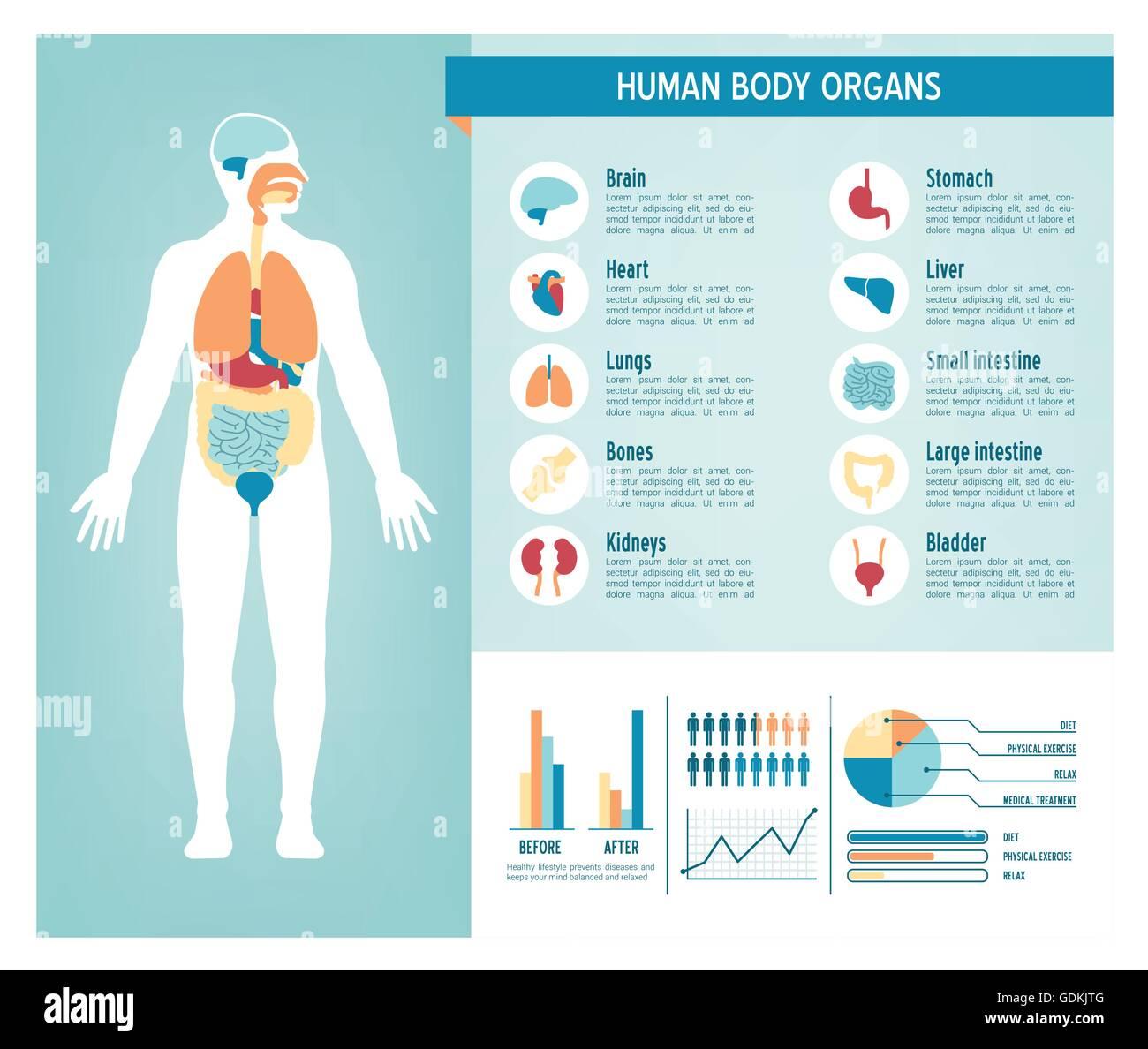 Menschlichen Körpers Gesundheitswesen Infografiken, mit ...