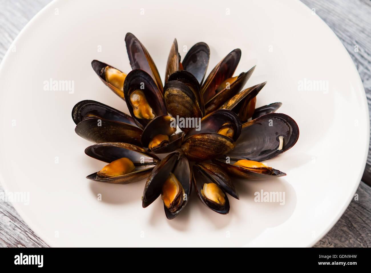 Gekochte Muscheln auf einem Teller. Stockbild