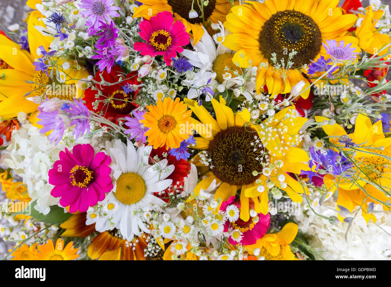 Nahaufnahme von Blumenstrauß. Stockbild