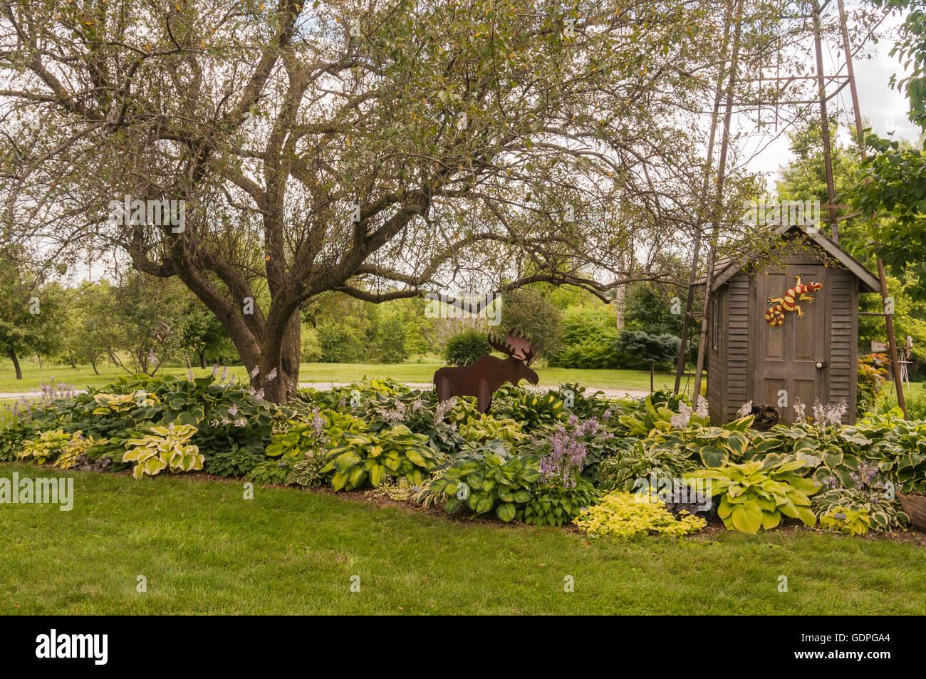 Hosta Garten Mit Elch Skulptur Und Pumpenhaus Stockfoto Bild