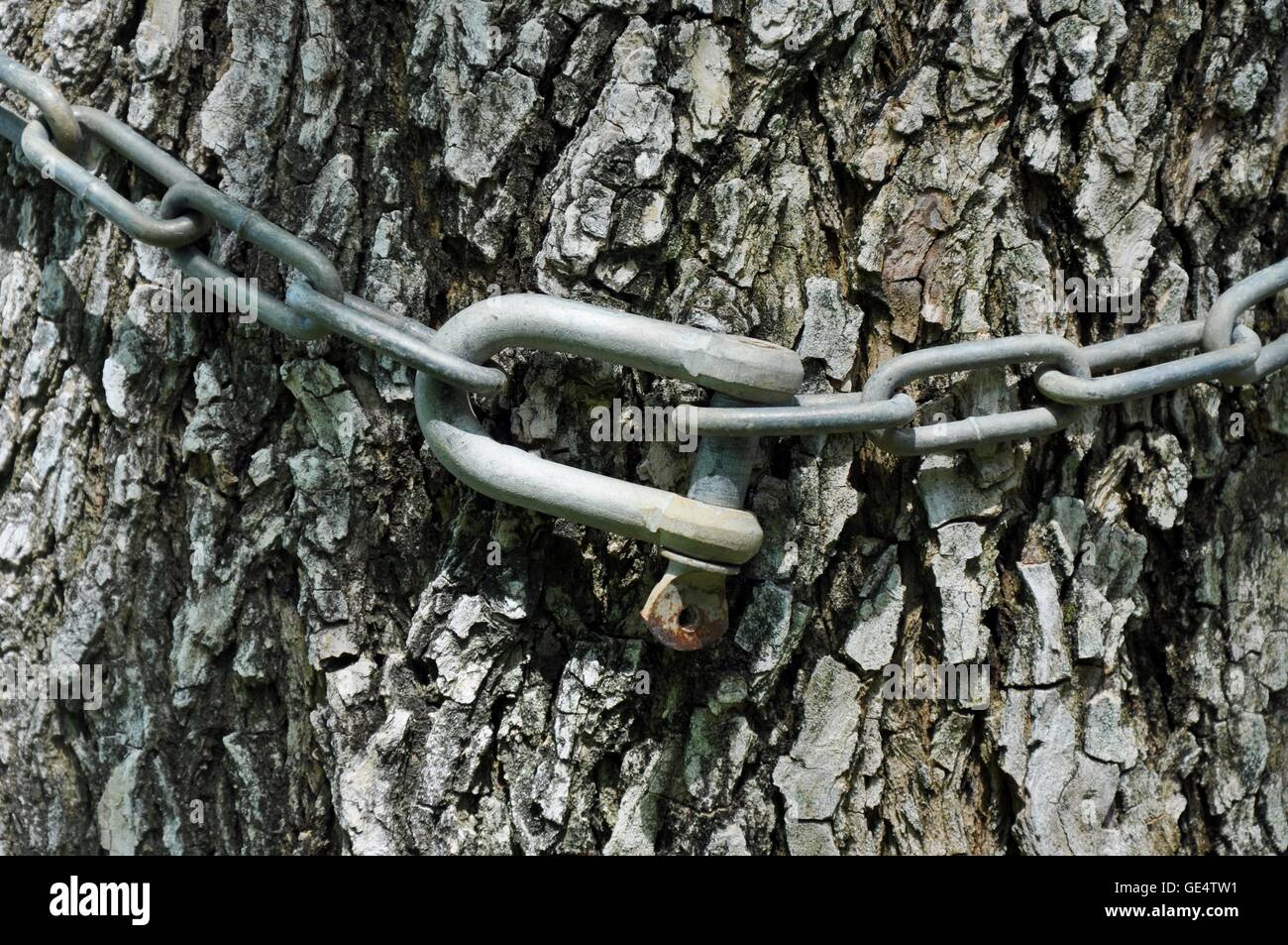 Metal Wrapped Stockfotos & Metal Wrapped Bilder - Alamy