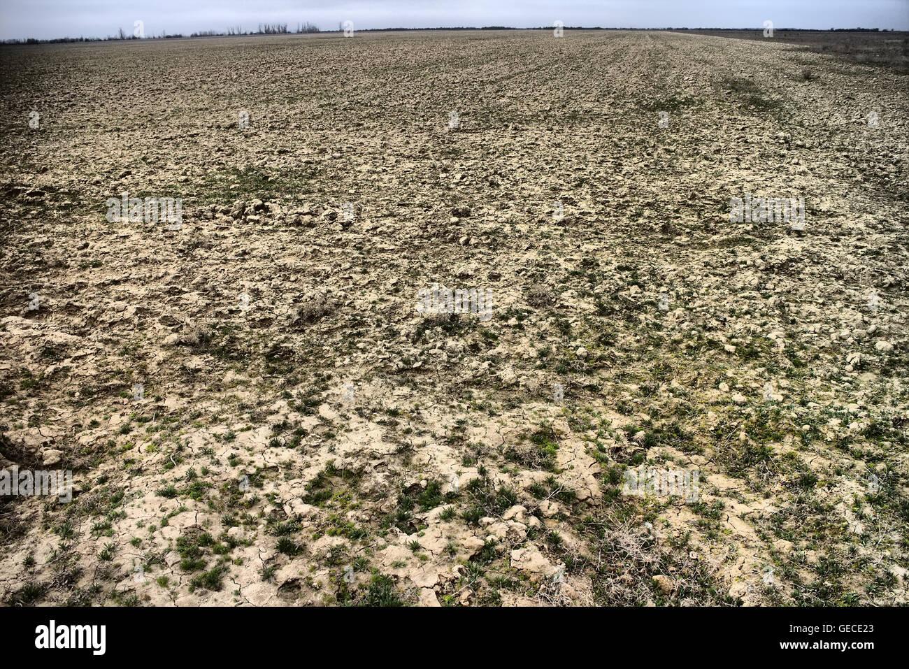 Versalzung Boden