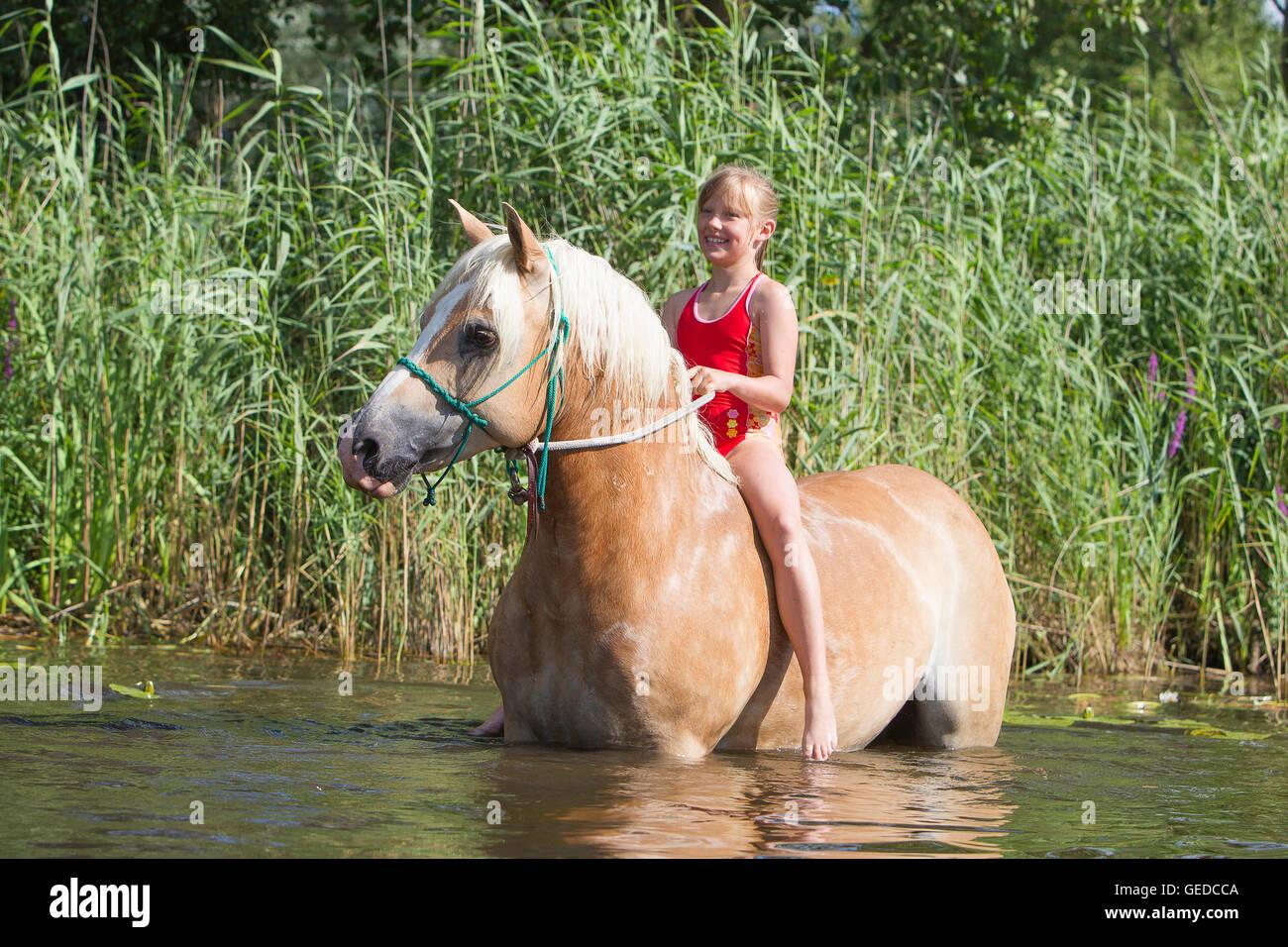 haflinger pferd mädchen im bad anzug mit ihrem pferd in