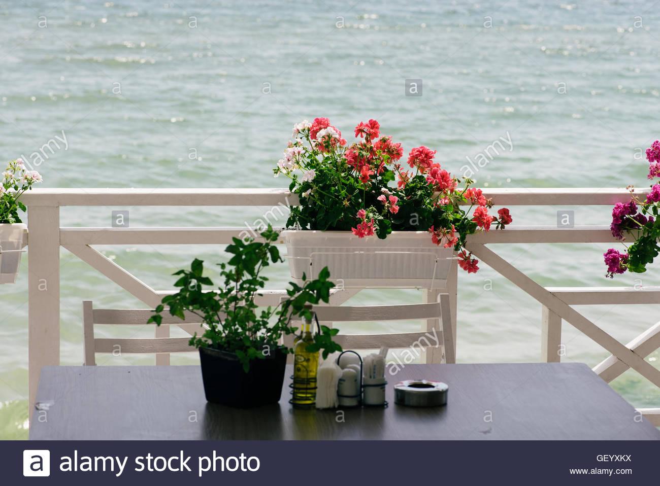 Einen Topf Mit Roten Und Weissen Blumen Auf Dem Balkon An Einem Tisch