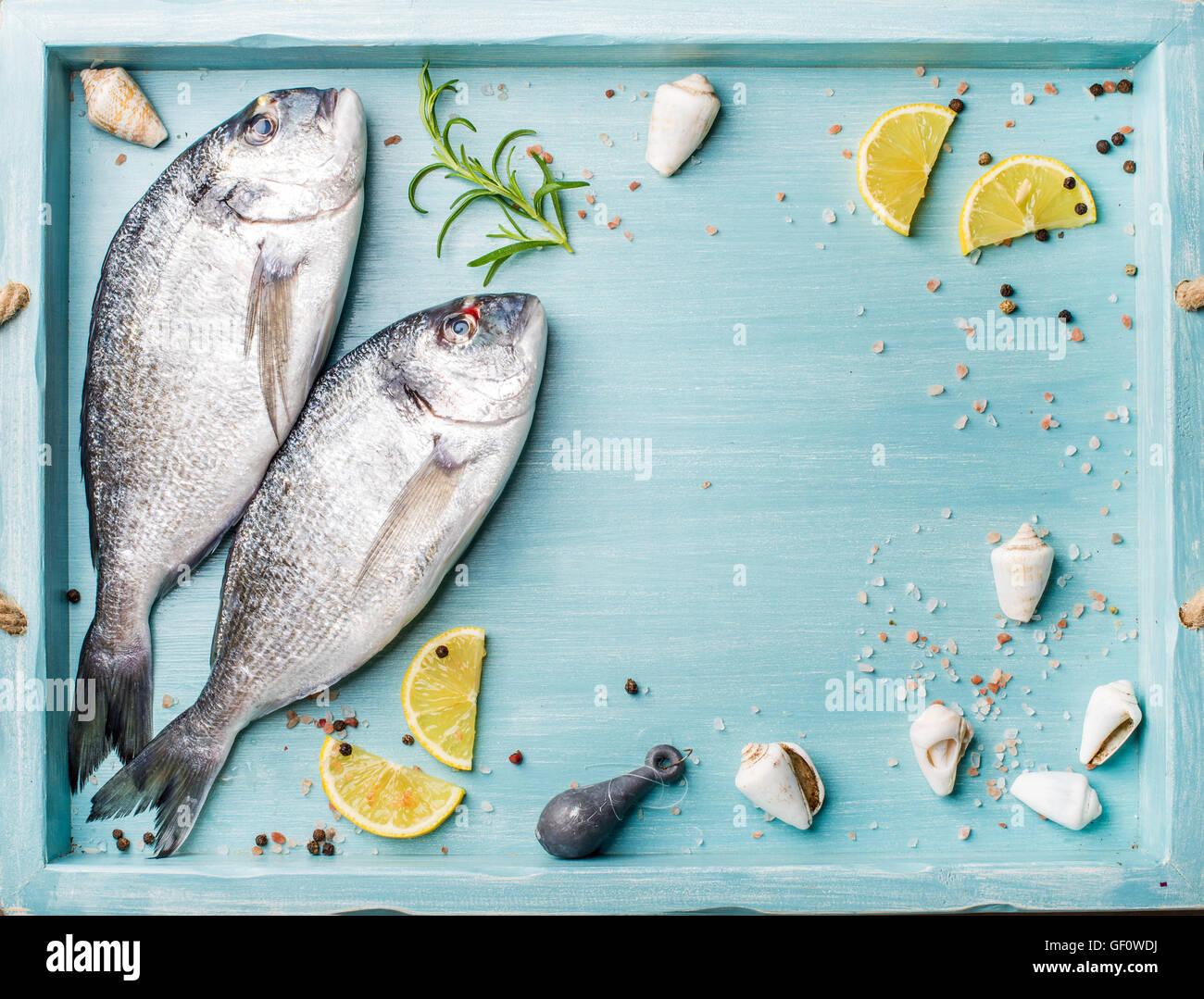 Frisches rohes Dorade Fisch dekoriert mit Zitronenscheiben, Kräutern und Muscheln im blauen Tray, Textfreiraum Stockbild