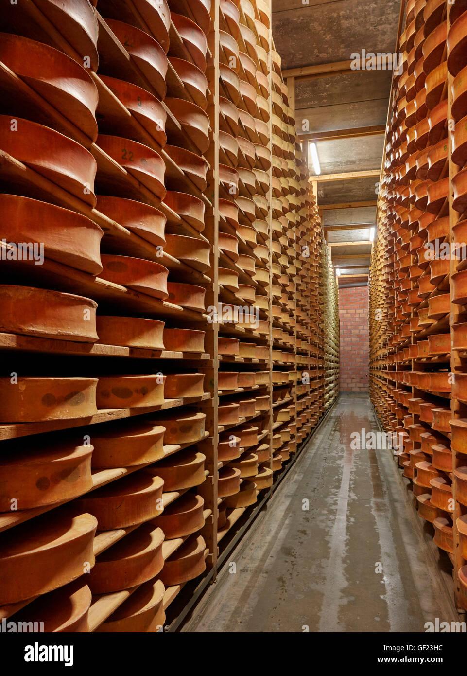Vintage Beaufort Käse Altern in Monts et Terroirs Käse Hersteller. La Bathie, Savoie, Frankreich. Stockbild