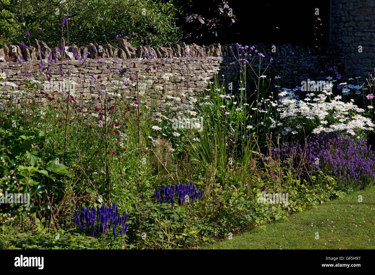 Sommer krautige Boarder mit Trockenmauer, Cotswolds, England Stockbild