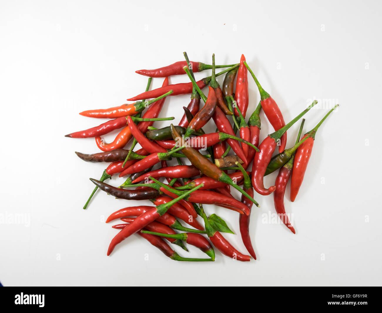 Chili essen Kraut Heilpflanzen würzen Zutat Aroma würzen Guinea-Pfeffer Stockbild