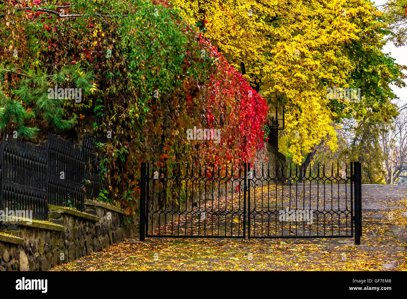 wet cobblestone street after rain stockfotos wet cobblestone street after rain bilder alamy. Black Bedroom Furniture Sets. Home Design Ideas