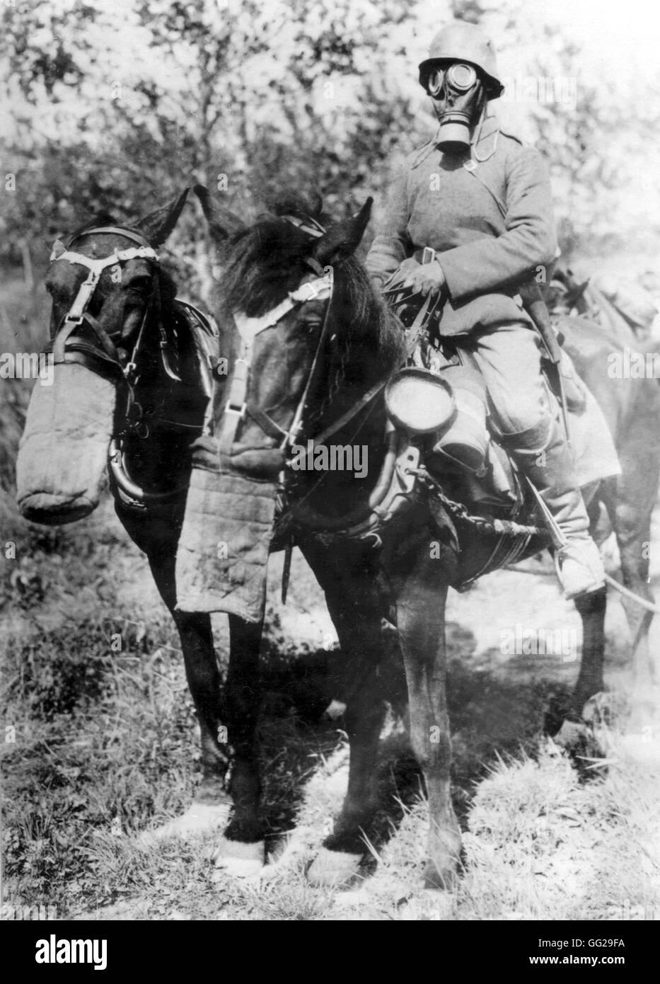 O To Ww Bing Comsquare Root 123: Deutscher Soldat Zu Pferd Mit Einer Gasmaske Deutschland