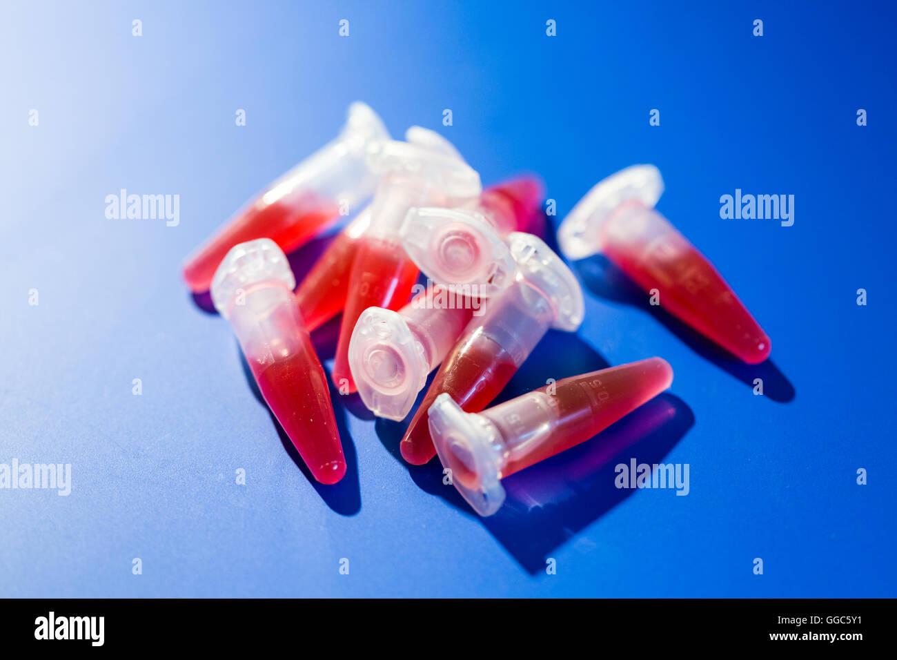 Virologie Reagenzglas mit Requisiten und Probe Stockbild