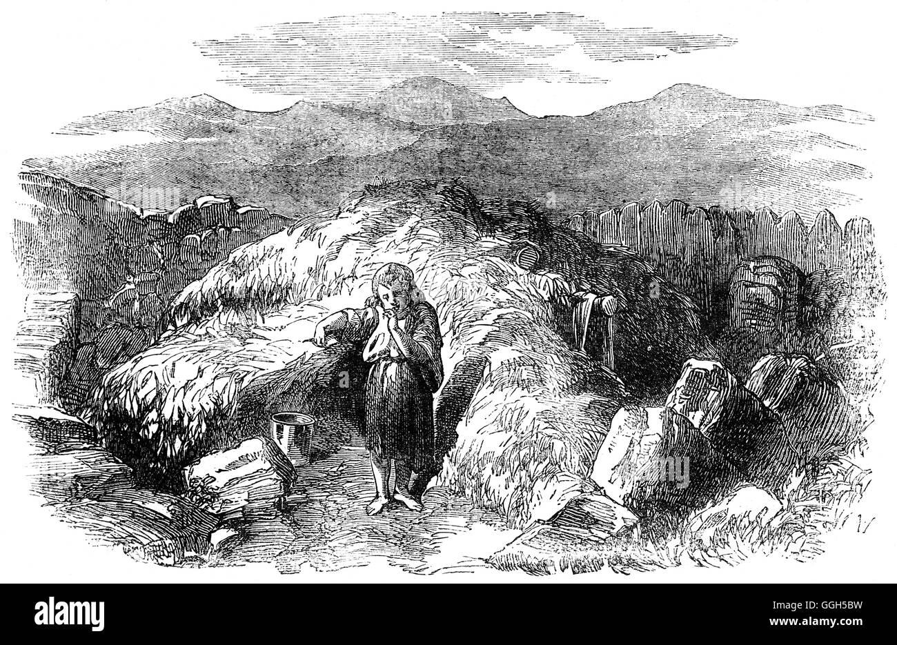 Datierung eines Bauern in ireland