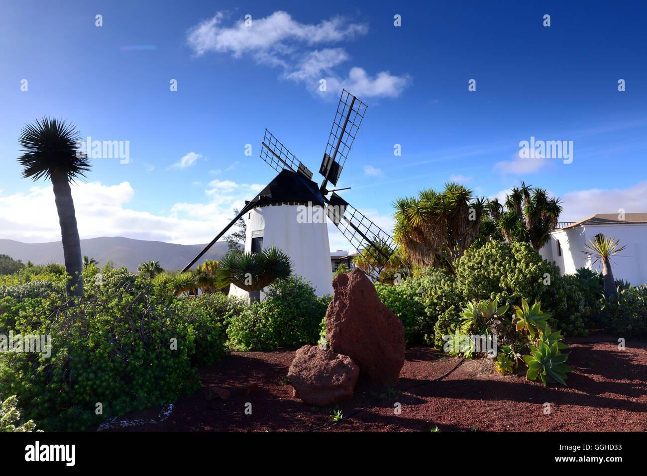 Mühle in der Nähe von Antigua, Fuerteventura, Kanarische Inseln, Spanien Stockbild