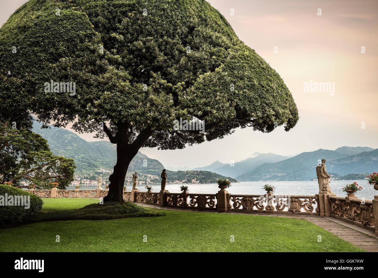 Garten mit tollen Baum in Villa del Balbianello in Lenno, Comer See, Lombardei, Italien, Europa Stockbild
