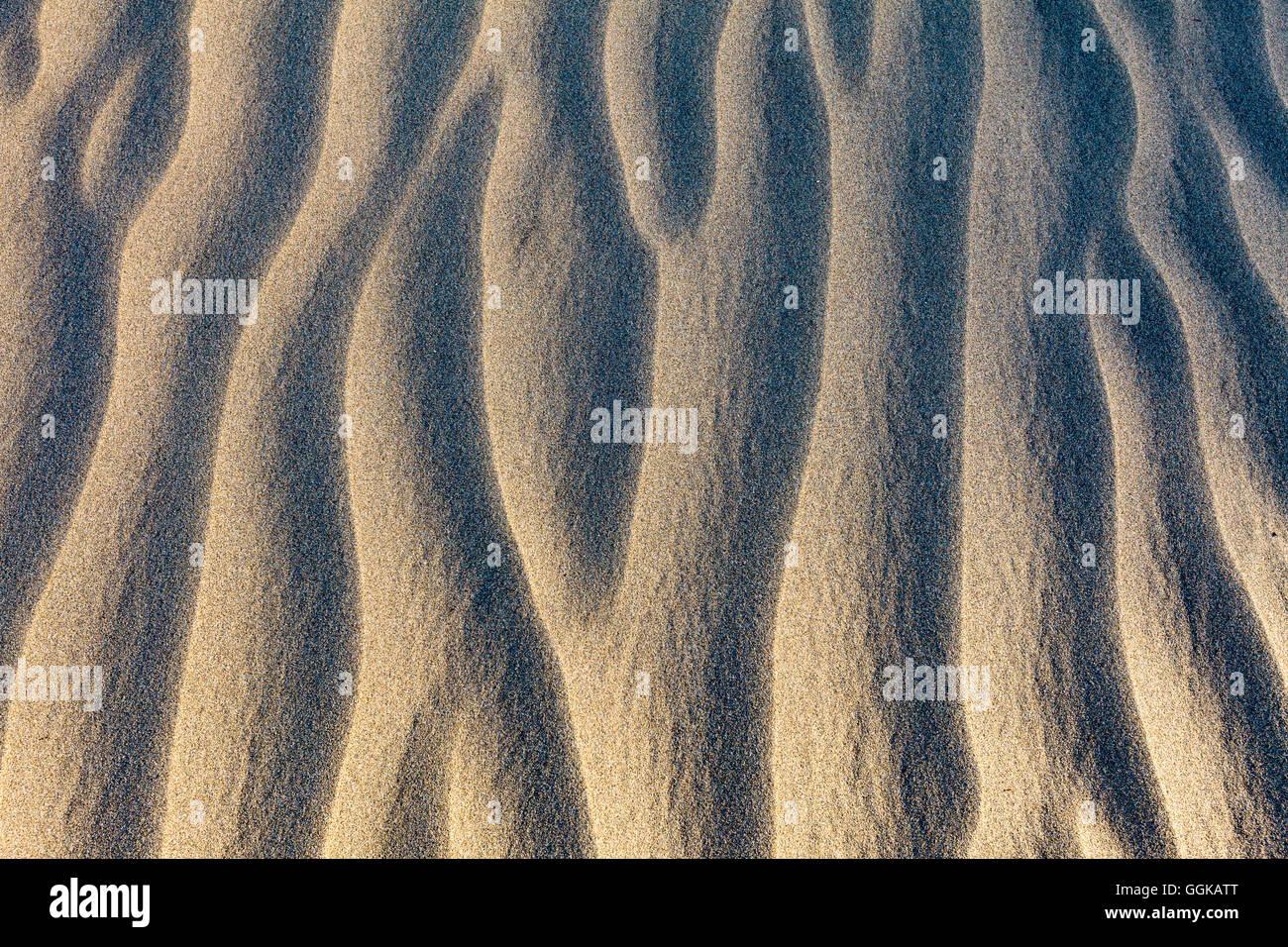 Muster auf einer Sanddüne, die Dünen von Maspalomas, Gran Canaria, Kanarische Inseln, Spanien Stockbild