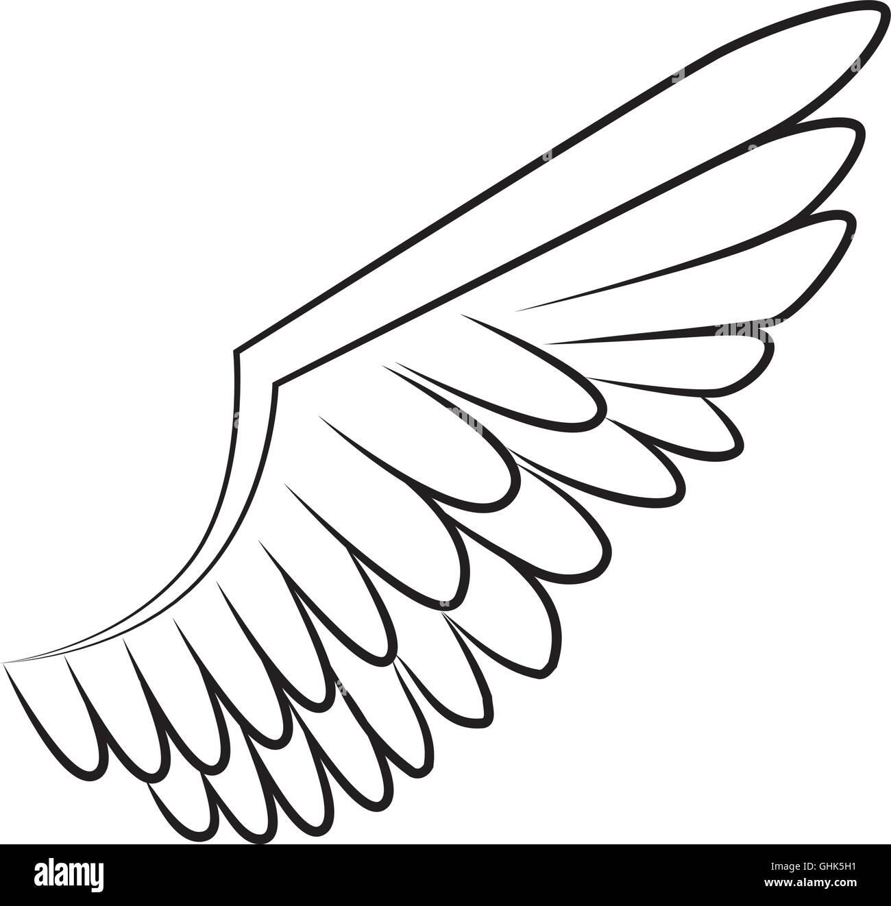Groß Vogelflügel Anatomie Diagramm Ideen - Anatomie Von Menschlichen ...
