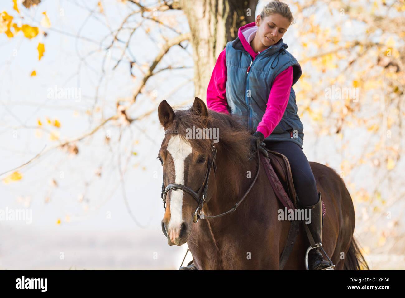 Junges Mädchen reiten durch den Wald Stockbild