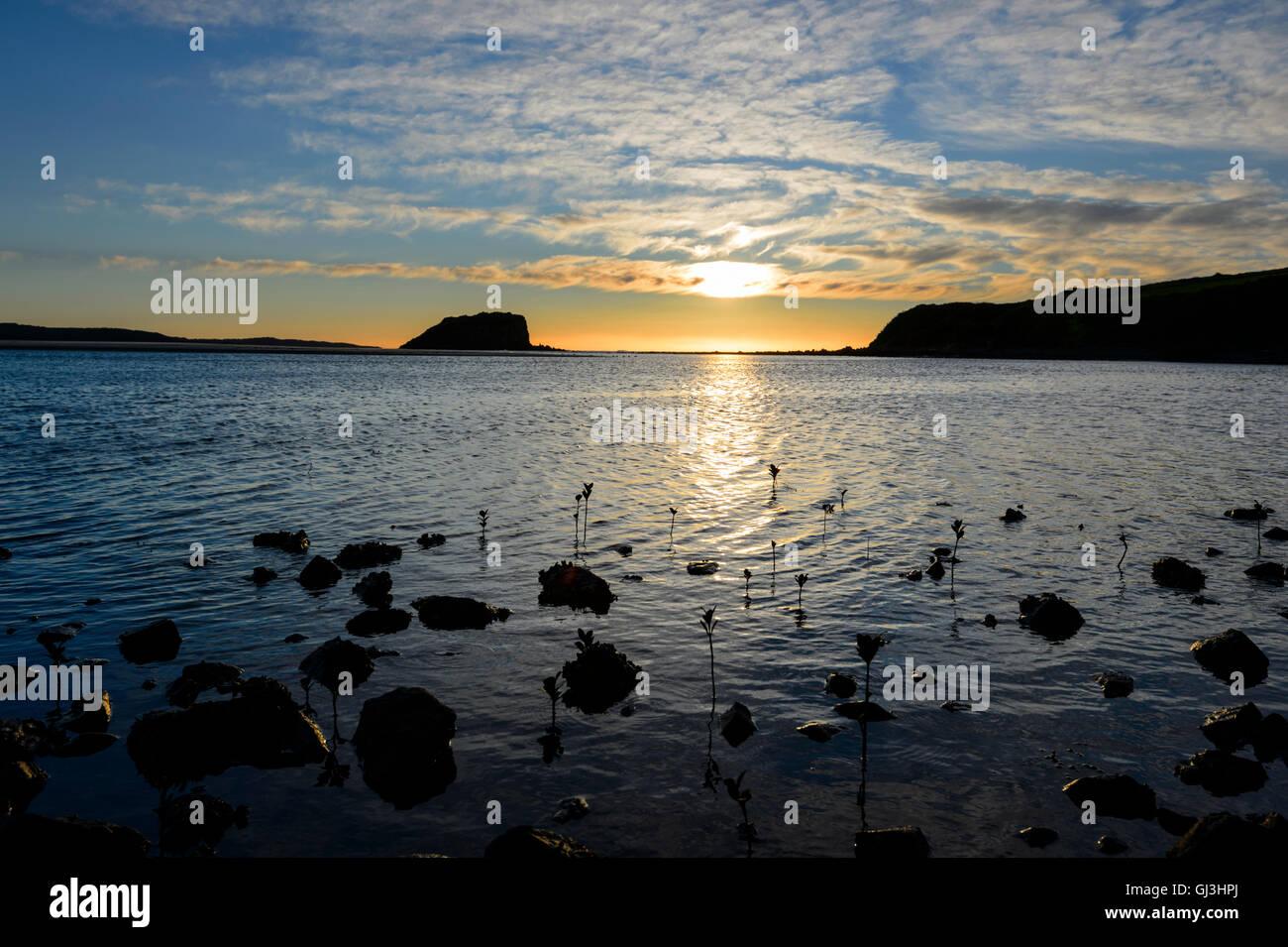 Ethereal Sonnenaufgang über Minnamurra, Illawarra Küste, New South Wales, NSW, Australien Stockbild
