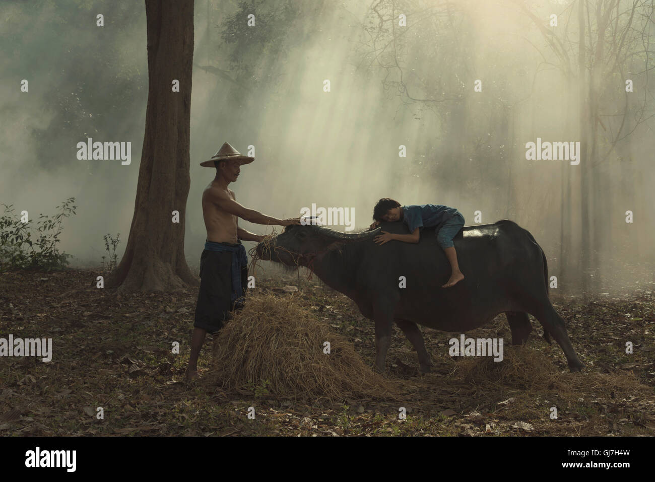 Bauer-Familie und Kind liegen auf dem Rücken eines Büffels. Stockbild