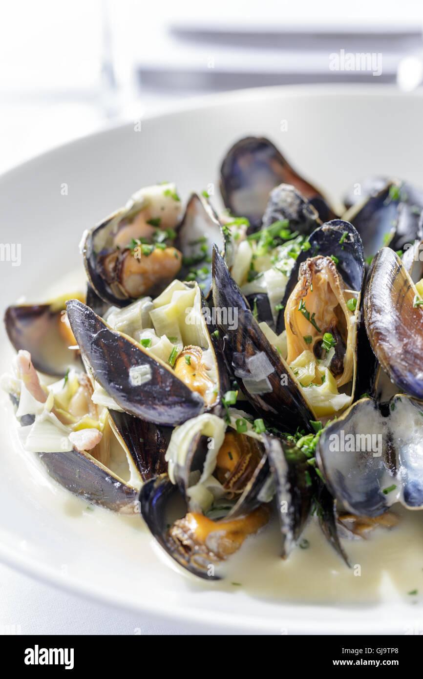 Muscheln, Moule Mariniere auf weißen Teller im Restaurant serviert. Stockbild