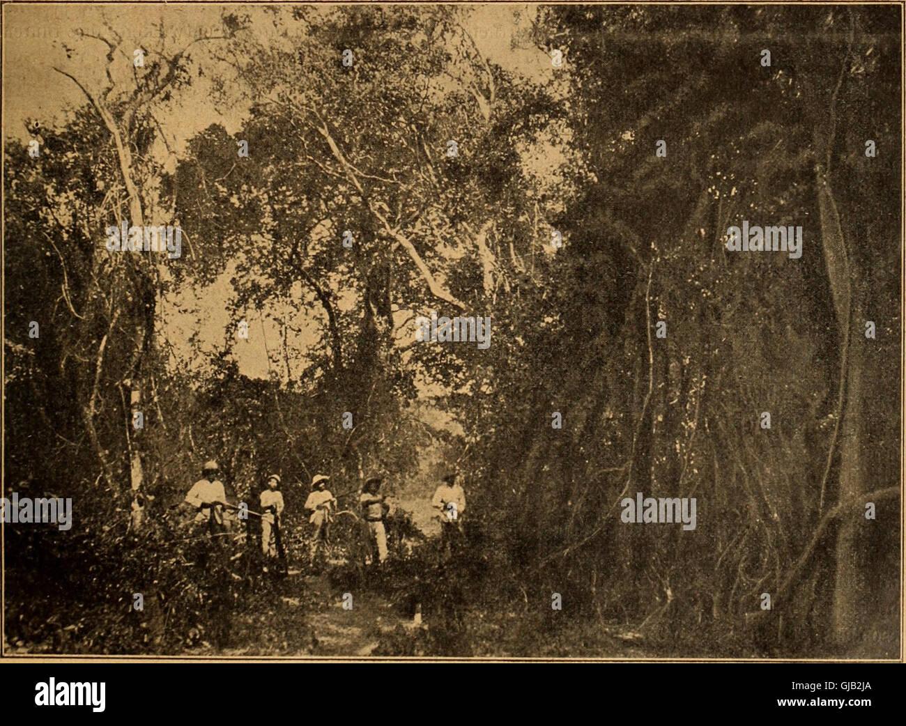 Blätter Für Aquarien Und Terrarien-Kunde (1902) Stockfoto