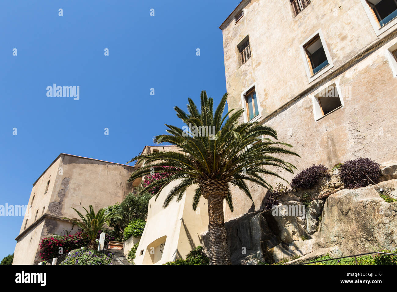 Zitadelle von Calvi auf der französischen Insel Korsika Stockbild