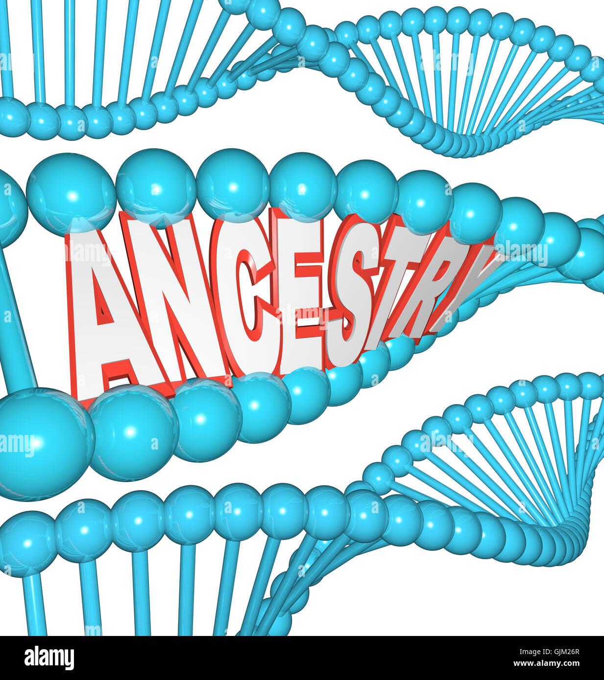 Abstammung-Wort in der DNA-Forschung Ihre Genealogie ahnen Stockbild