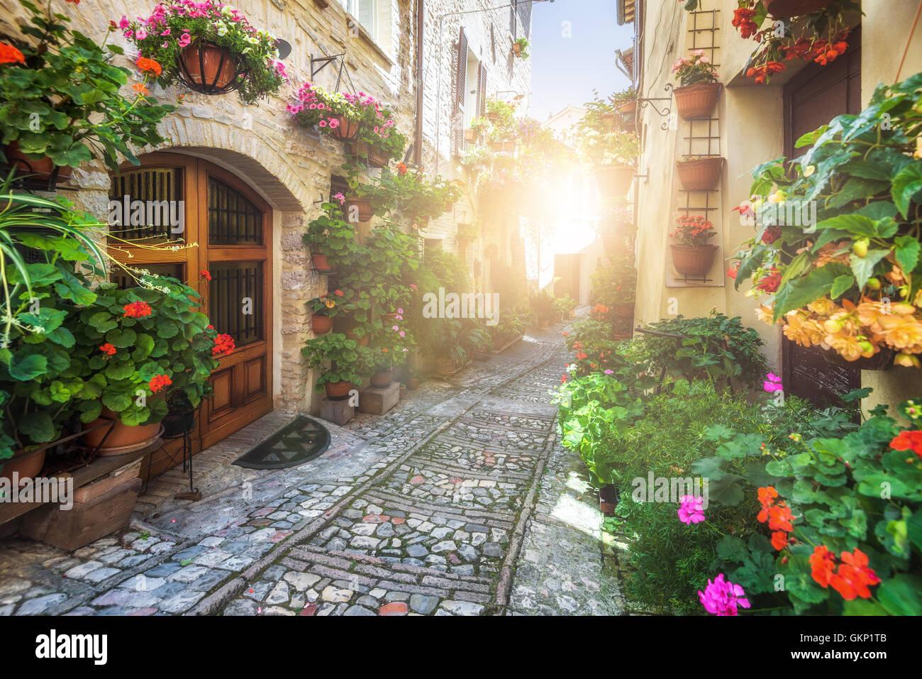 Spello und seine Ecken und Straßen der schönsten italienischen Städte in Italien. Stockbild