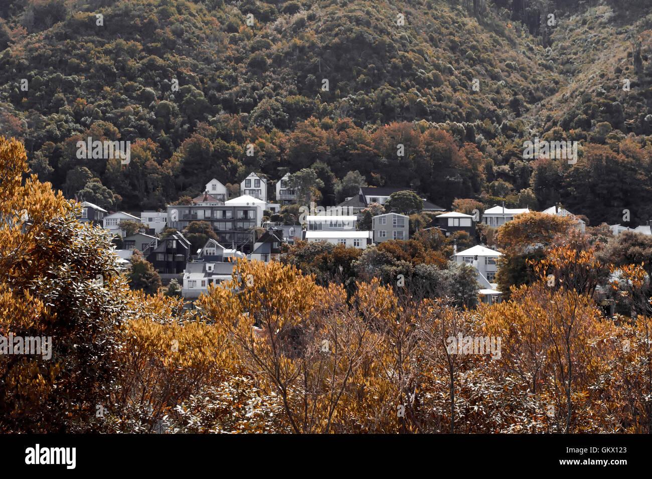 Hügelige Wellingtons Elite Wohngegend in Thorndon, die historischen inneren Vorort von Wellington, der Hauptstadt Stockbild